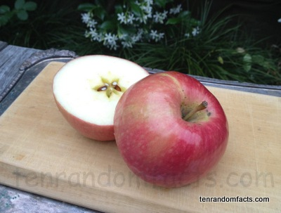 Red Apple, Pink Lady Apple, Ten Random Facts