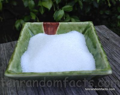 sugar, food, ten random facts