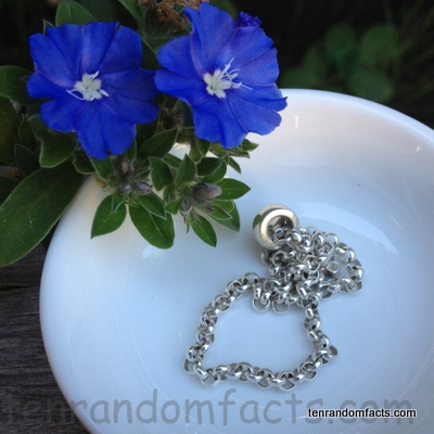 Silver necklace, Blue Flowers, Ten Random Facts