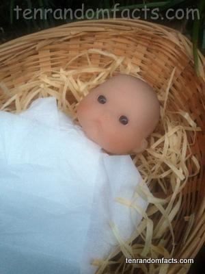Baby Jesus Christ, doll, Boy, Wicker, Small, Basket , Manger, Clothe, Cute, Straw Shred, Ten Random Facts