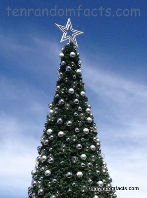 Large, Outdoors, Christmas Tree, Shopping Center, Ten Random Facts
