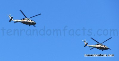 Helicopters, Two, Above, Bottom View, Army coloured, Military, Australia, Ten Random Facts