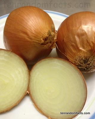 Onion, Cut, Halve, Brown, Orange, Skin, Rings, Australia, three, Ten Random Facts