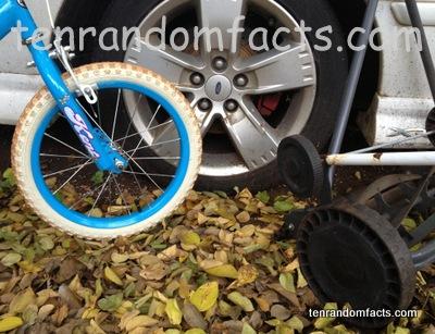 Wheel, Blue, Grey, Black, Car, bicycle, Ten random Facts