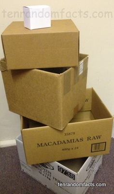 Cardboard Box, Brown< white, Open, Closed, Stack, Small, Medium, Large, Ten Random Facts