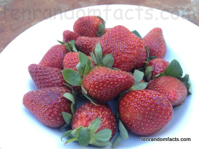 Strawberry, punnet, group, bunch, red, many, bowl, whole, picked, supermarket, Aldi, Ten Random Facts