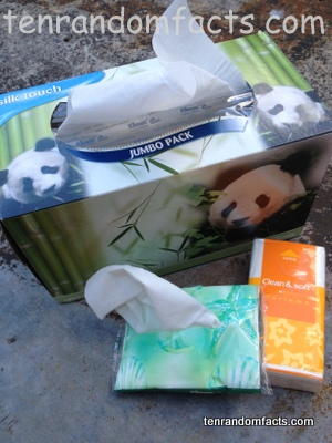 Facial Tissues, Small, Box, Closed, Soft, Panda, Blue, orange, Ten Random Facts, Australia