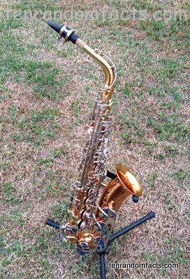 Saxophone king 660 gold silver alto ten random facts instrument
