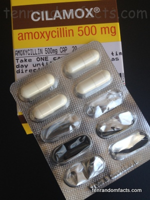 Amoxicillin, Amoxycillin, Tablet, Pill,500mg, Cilamox, Ten Random Fqcts, Drug, Antibiotic, Ten Random Facts