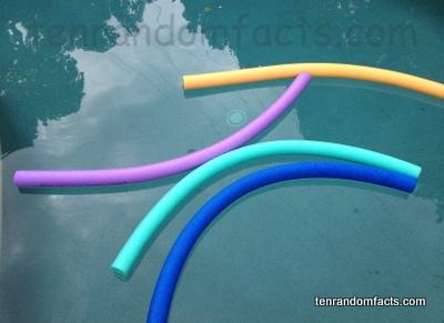 Pool Noodle Ten Random Facts