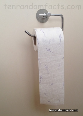 Toilet Paper, White, Ten Random Facts, Lavender, Pattern, Invention, Bathroom, Hook,