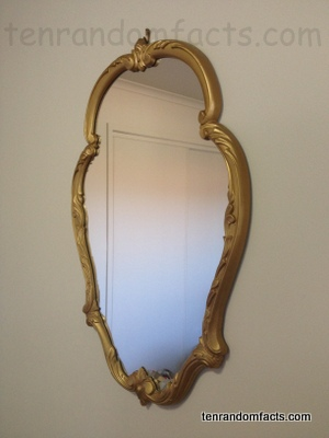 Mirror, Reflective, Invention, Ten Random Facts, Antique, Shine, Border, Oval, Flat, Ten Random Facts