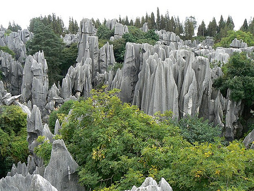 Shilin Stone Forest, China, Rocks, Vegetation, Piers, Ten Random Facts, Flickr
