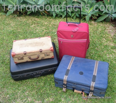 Suitcase, Invention, Trivia, Ten Random Facts, Assortment, Roll, Blue, Red