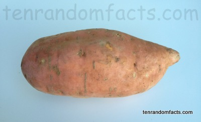 Sweet Potato, Food, Vegetable, Root, Culinary, Ten Random Facts, Yam
