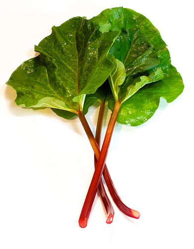 Rhubarb, Trivia, Ten Random Facts, Food, Culinary, Vegetable, Fruit, Red, Stalks, Leaves, Green