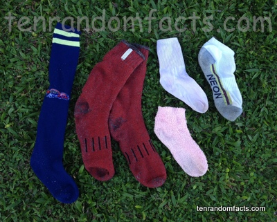 Sock, Clothing, Trivia, Ten Random Facts, Invention, Assortment, Pairs, Pink, Red, White, Black,