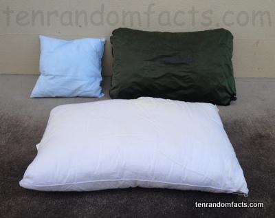 pillow ten random facts. Black Bedroom Furniture Sets. Home Design Ideas