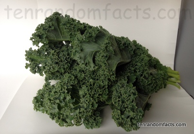 Kale, Vegetable, Trivia, Ten Random Facts, Food, Culinary, Green,