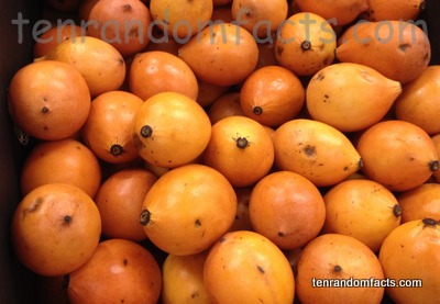 Achacha, Trivia, Ten Random Facts, Fruit, orange, Pile, Culinary, Gold