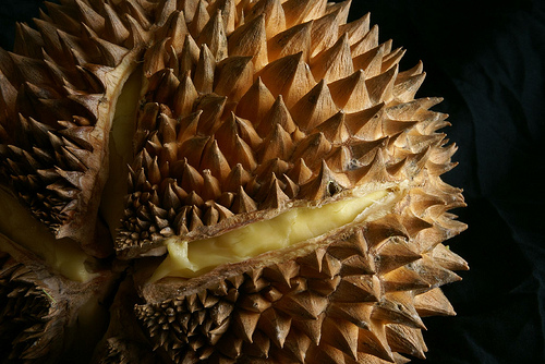 Durian, Ten Random Facts, Trivia, Fruit, Smelly, Exotic, Food, Culinary, Yellow, Open
