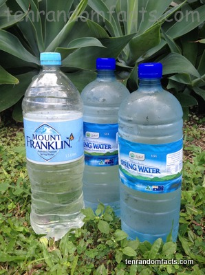 Water Bottle, Trivia, Ten Random Facts, Bottled, Single, Commercial, Spring, Fluid