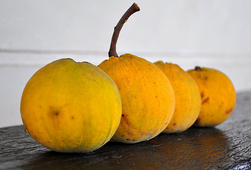 Santols, Fruit, Orange, Vegetation, Trivia, Ten Random Facts, Stalk, Whole, Unpeeled